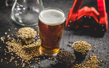 Cerveza y trigo