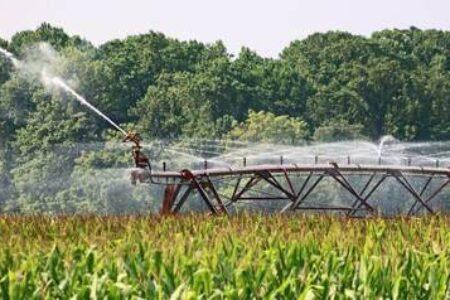 Cómo eliminar nitratos del agua