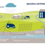 Límites permisibles de nitrato en el agua potable de Grecia: George Margiolos